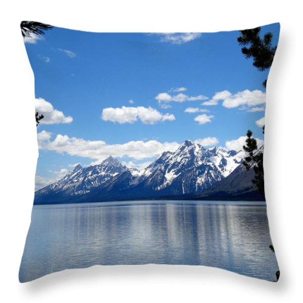 Mountain Reflection On Jenny Lake Throw Pillow by Dan Sproul