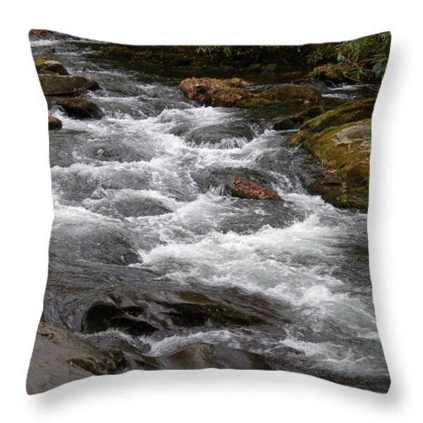 MOUNTAIN STREAM Throw Pillow by Skip Willits