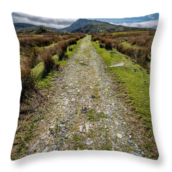 Mountain Track Throw Pillow by Adrian Evans