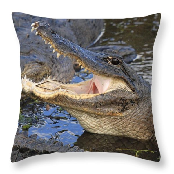 Mouth In The Middle Throw Pillow by Adam Jewell