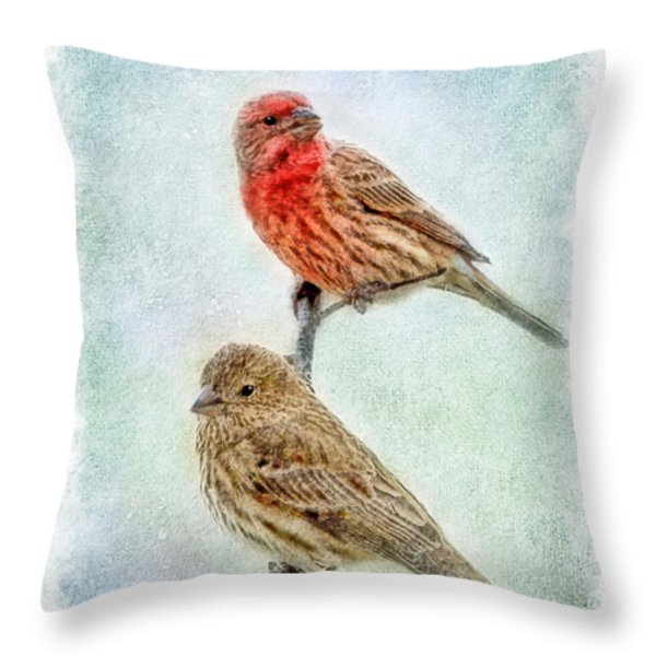 Mr And Mrs House Finch Digital Paint With Frame Throw Pillow by Debbie Portwood
