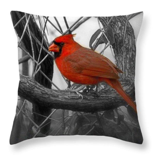 Mr Cardinal -card Throw Pillow by Sandra Clark