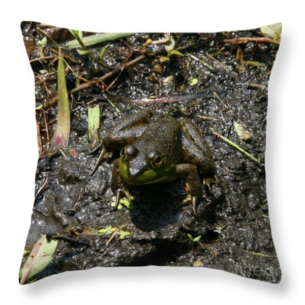 Mud Bath Throw Pillow by Neal  Eslinger