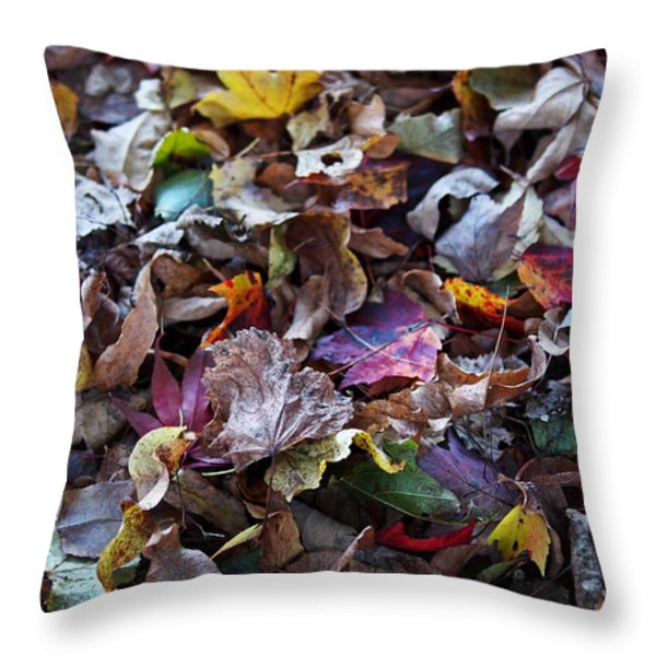 Multicolored Autumn Leaves Throw Pillow by Rona Black