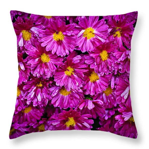 Mums Throw Pillow by Elena Elisseeva