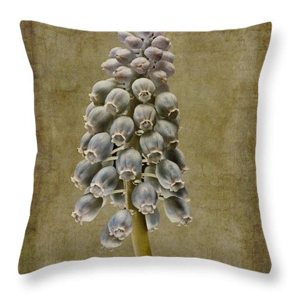 Muscari armeniacum with textures Throw Pillow by John Edwards