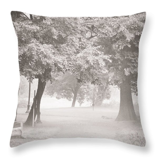 Museum Park Fog Throw Pillow by Trish Tritz