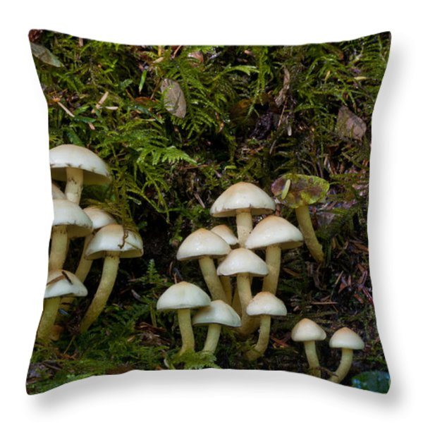 Mushrooms In The Oregon Coast Range Throw Pillow by William H. Mullins
