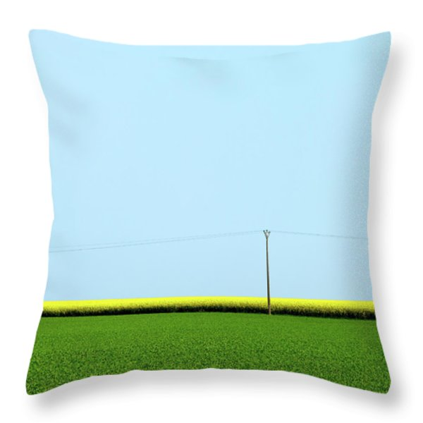 Mustard Sandwich Throw Pillow by Dave Bowman