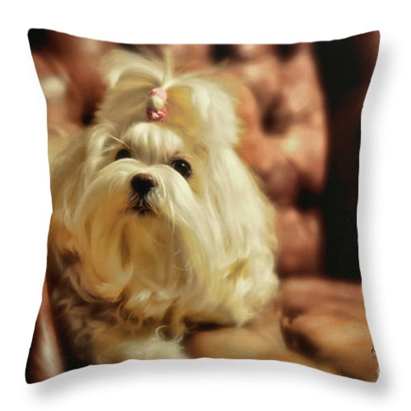 MY Chair Throw Pillow by Lois Bryan