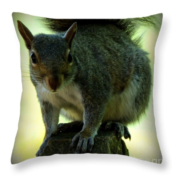 My Friend Throw Pillow by Rabiah Seminole