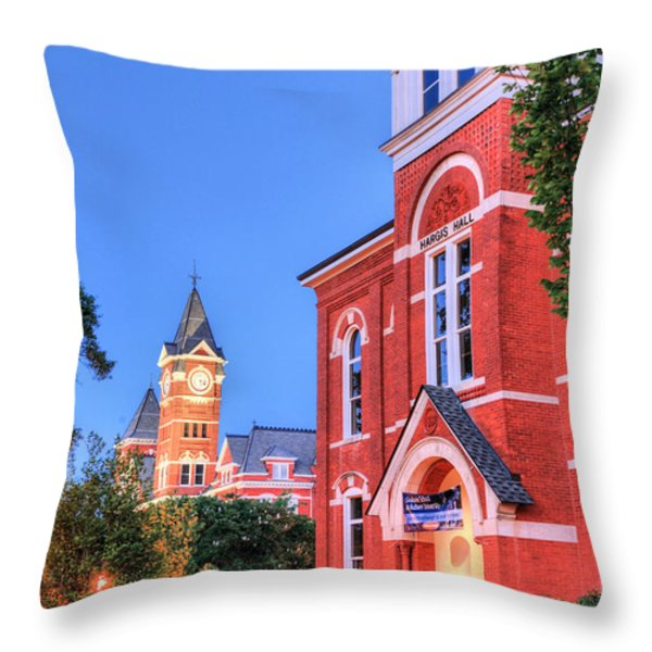 My Morning Walk Throw Pillow by JC Findley