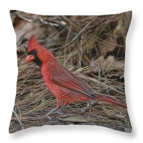 My Name Is Red Throw Pillow by Deborah Benoit