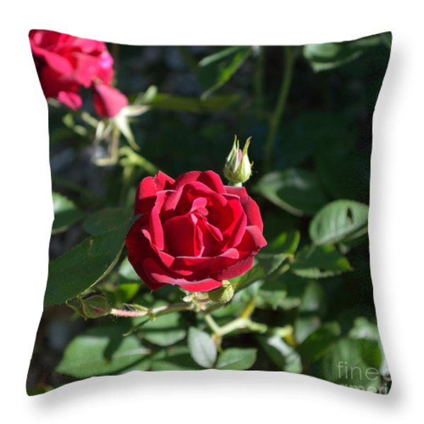 My Red Rose Throw Pillow by Alys Caviness-Gober