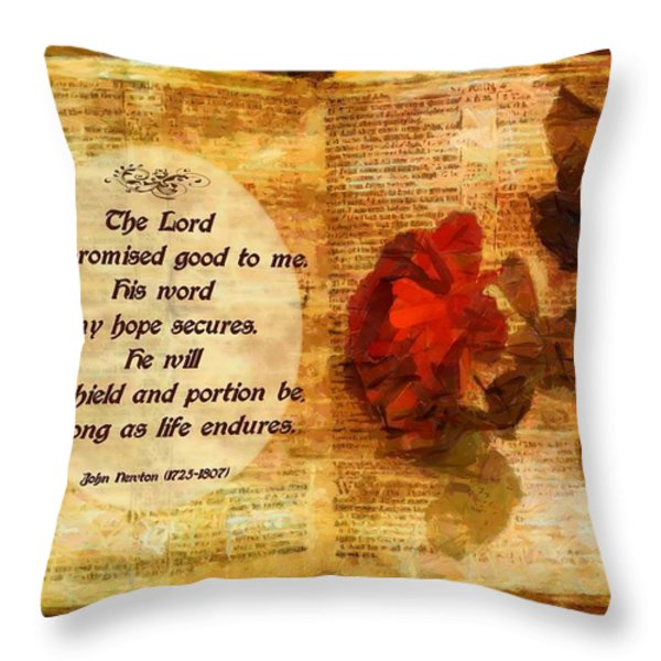 My Shield And Portion Throw Pillow by Michelle Greene Wheeler