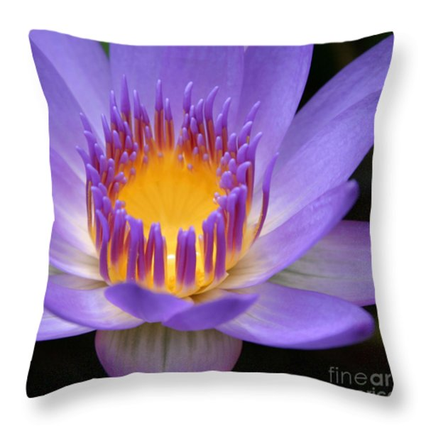 My Soul Dressed in Silence Throw Pillow by Sharon Mau