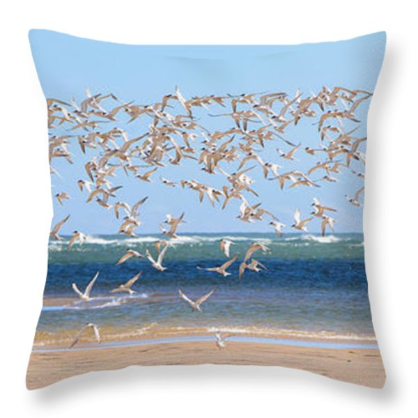 My Tern Throw Pillow by Bill  Wakeley