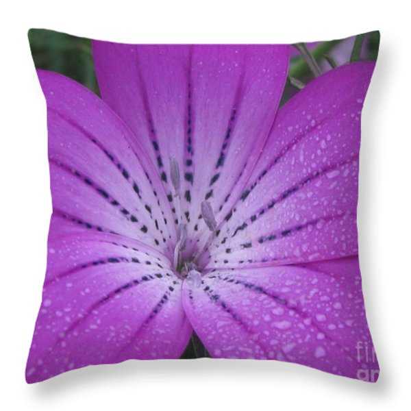 mysterious photography Throw Pillow by Tina Marie