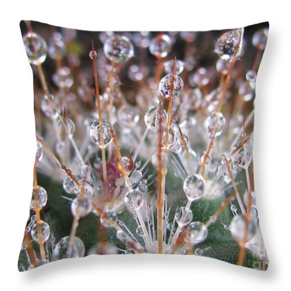 Mystical Photography Throw Pillow by Tina Marie