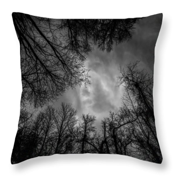 Naked Branches Throw Pillow by Bob Orsillo