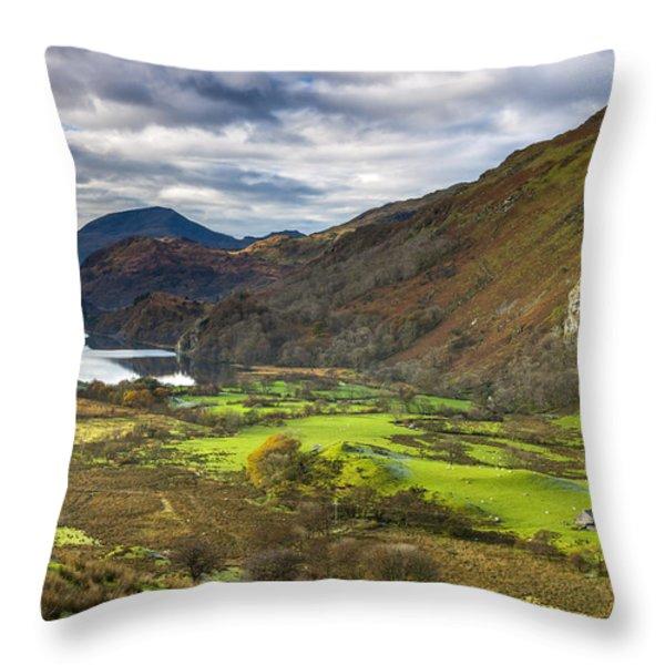 Nant Gwynant Throw Pillow by Sebastian Wasek