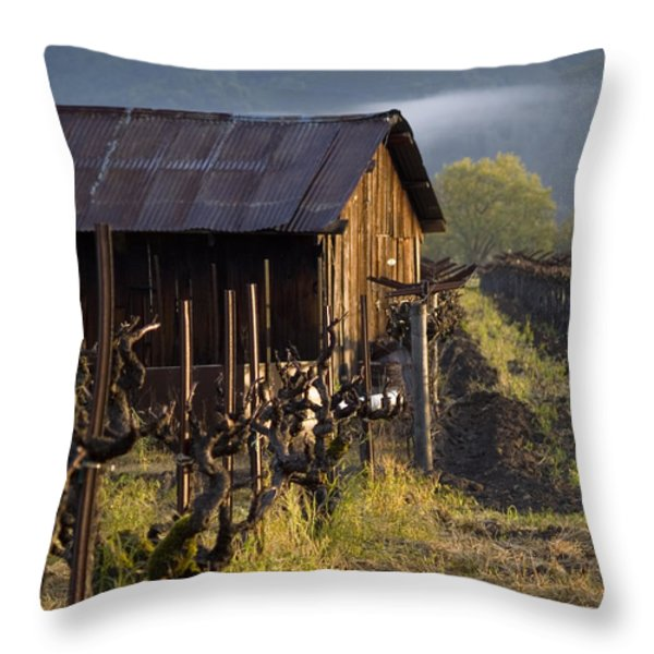 Napa Morning Throw Pillow by Bill Gallagher