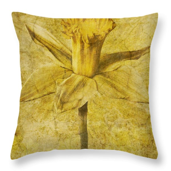 Narcissus Pseudonarcissus Throw Pillow by John Edwards