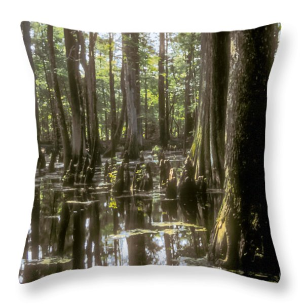 Natchez Trace Wetlands Throw Pillow by Bob Phillips