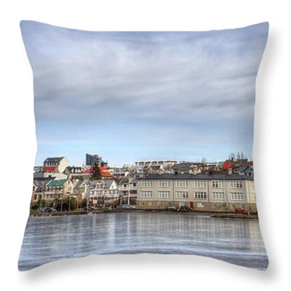 Native Harmony Throw Pillow by Evelina Kremsdorf