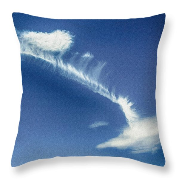 Natural Abstract Creations In Nature No 103 Throw Pillow by Bob and Nadine Johnston