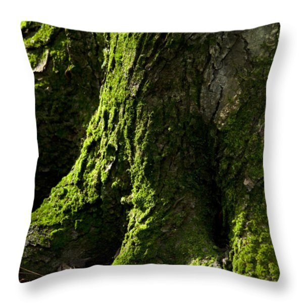 Nature Abstract Tree Trunk Throw Pillow by Christina Rollo