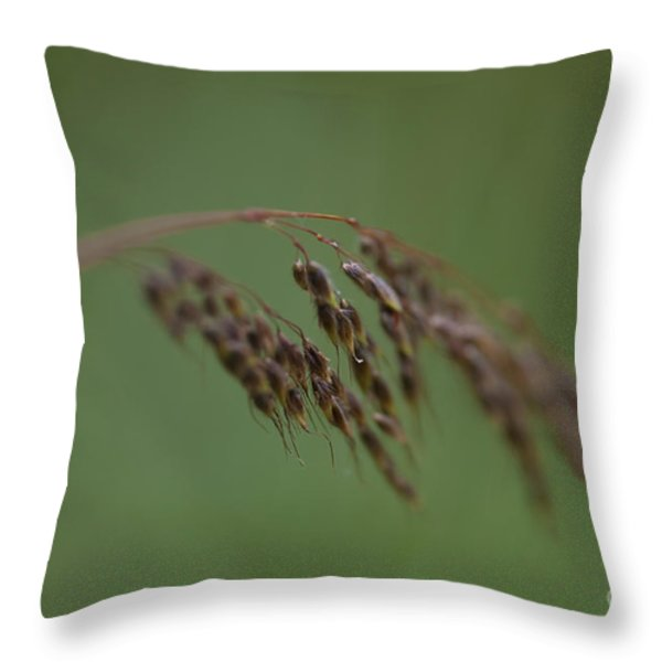 Nature Whisper.. Throw Pillow by Nina Stavlund