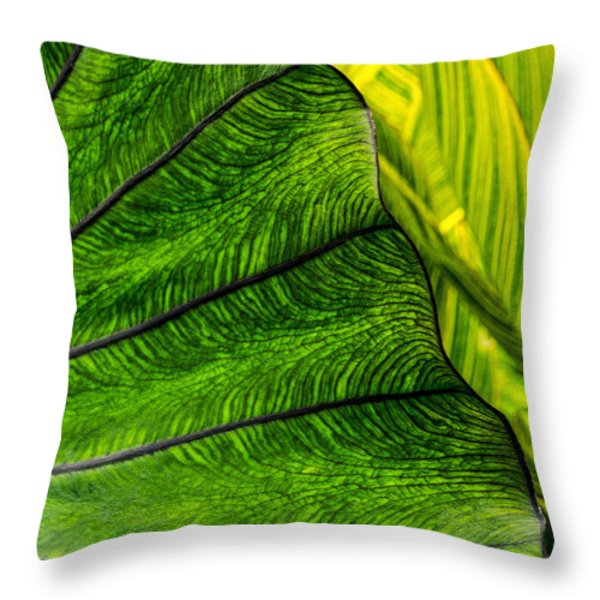 Nature's Artistry Throw Pillow by Jordan Blackstone