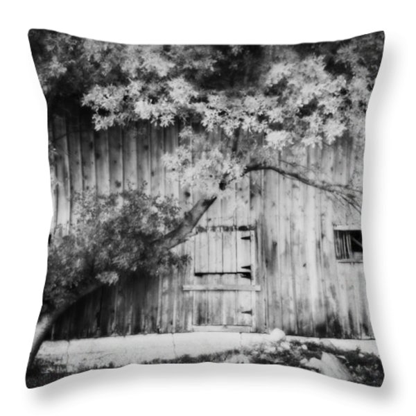 Natures Awning Bw Throw Pillow by Julie Hamilton