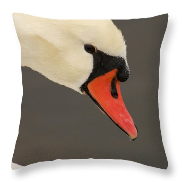 Natures Beauty Throw Pillow by Bob and Jan Shriner