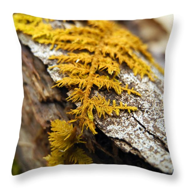Nature's Carpet Throw Pillow by Christina Rollo