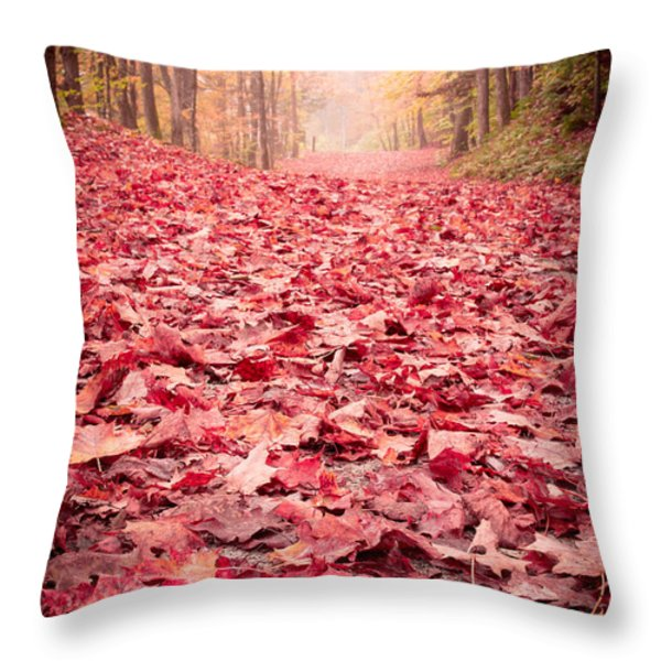 Nature's Red Carpet Revisited Throw Pillow by Edward Fielding