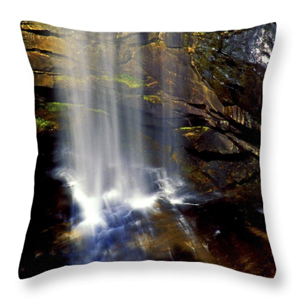 Natures Shower Stall Throw Pillow by Paul W Faust -  Impressions of Light