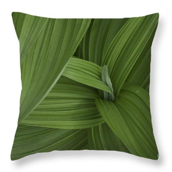 Natures Splendor Throw Pillow by Alana Ranney