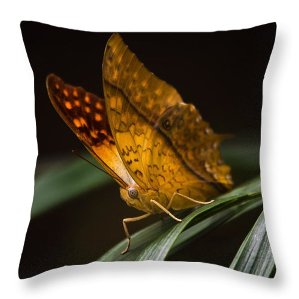 Nature's Wonders  Throw Pillow by Saija  Lehtonen