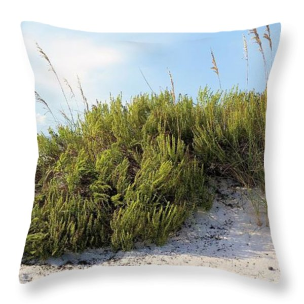 Navarre Florida Throw Pillow by JC Findley