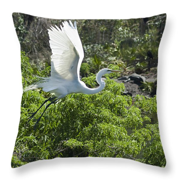 Need More Branches Throw Pillow by Carolyn Marshall