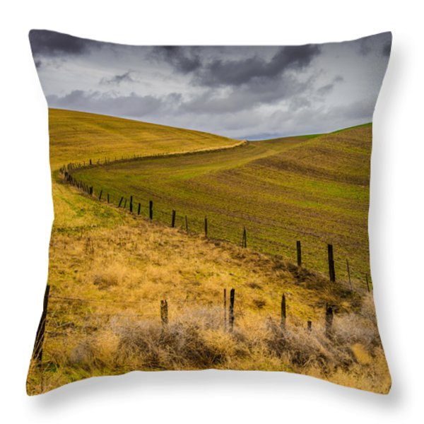 Neighbors Throw Pillow by Dan Mihai