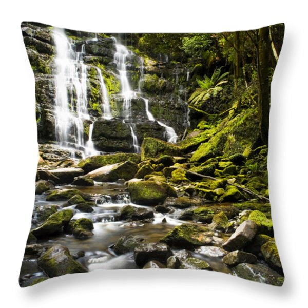 Nelson Falls Tasmania Throw Pillow by Tim Hester