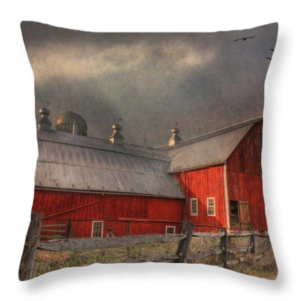 Nescopeck Duck Barn Throw Pillow by Lori Deiter