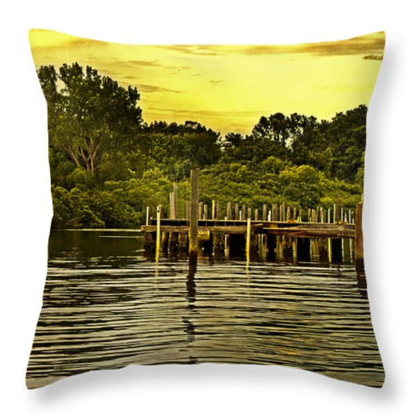 Neshaminy State Park Throw Pillow by Tom Gari Gallery-Three-Photography