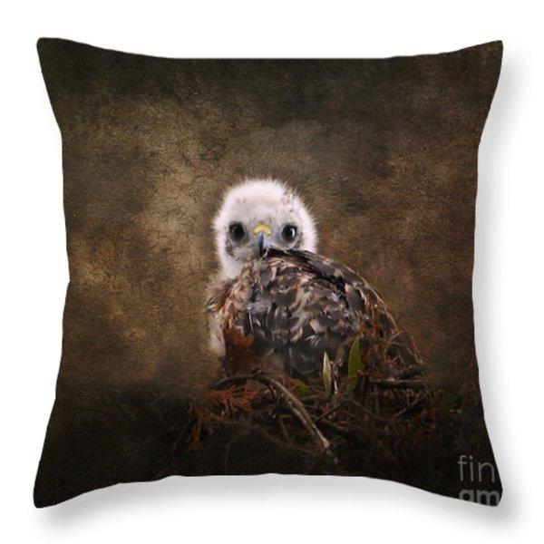 Nestling Throw Pillow by Jai Johnson
