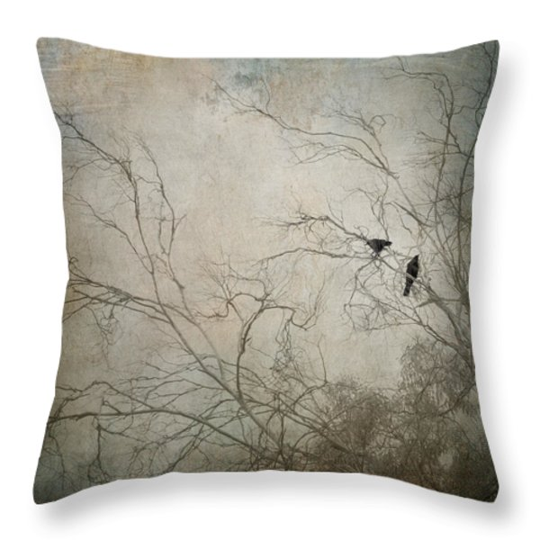 Nevermore... Throw Pillow by Amy Weiss