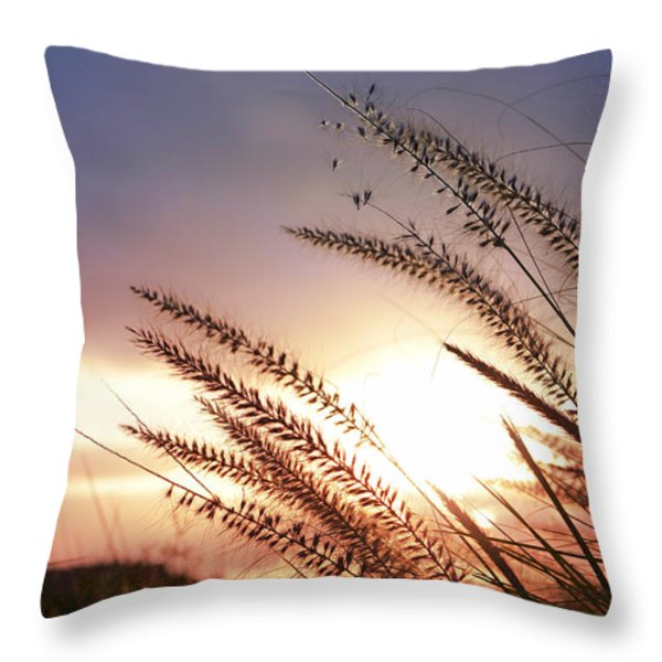 new day Throw Pillow by Laura  Fasulo