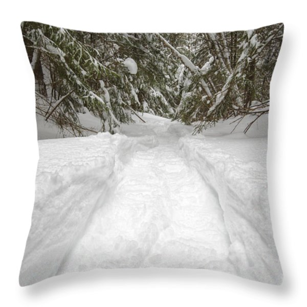 New England Snow-covered Forest - New Hampshire Usa Throw Pillow by Erin Paul Donovan